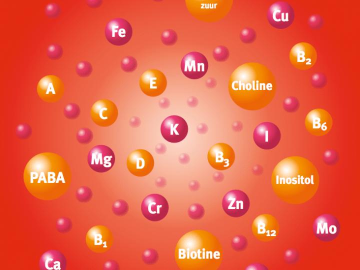 Waar zou uw multivitamine aan moeten voldoen?